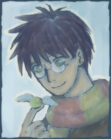 Harry potter by Darci-San