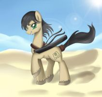 Commission: Desert Zorro by pridark