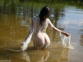 Found in Pond - 4 by mjranum-stock