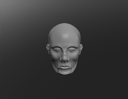 the head sculptris raw image 1 by Technohippy