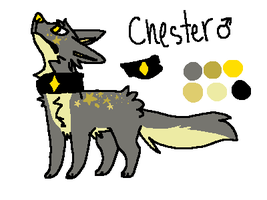temporary chester ref by virgoindigo