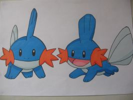 Mudkips V3- Colour by sazmullium