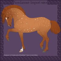 Nordanner Import 1051 by ShadowRaven1