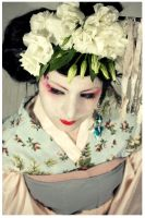 Geisha OO4 by EmbryonalBrain
