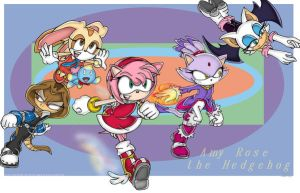 Amy Rose promo by combatmaster
