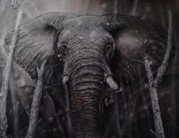 Elephant, charcoal A3, brown pastel paper by Helsartpage