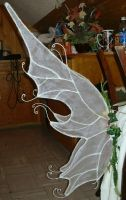 Fae Wings by beatnik