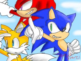 Team sonic. by SonicStarz1
