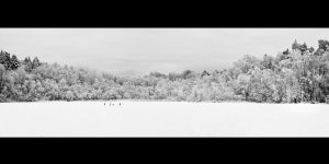Winter Pano by CalleHoglund