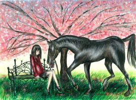 Black Horse and a Cherry Tree by German-Blood