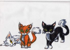 kittens by RACHLOVEDRAW