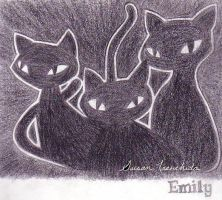 Emily cats by aquablueflamedragon