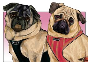 Otis and Chloe by Bardsville