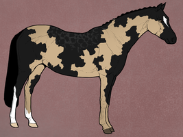 Witveld's SWB - The Lady of Chantilly - FC by Kawisaurus