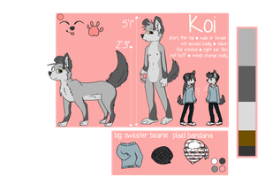Koi Reference 2013 by sweaterrs