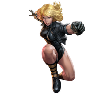 Black Canary - Transparent by Asthonx1