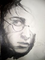 HP:PoA WIP 1 by MoPotter