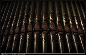 Organ pipes 1 by scaber