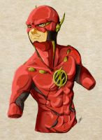 The Flash! by LocustaPhobia