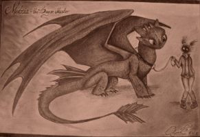 Toothless by mirikul