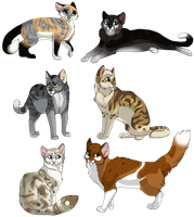 10 Adopt Cats 5 by MlSTY