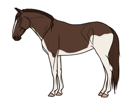 AQS Toffee Princess - Sold by HeavenClan