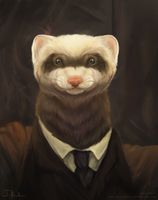 Fancy Ferret by HeliacWolf