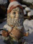 Lawn Gnome, avec snow. by jstan714