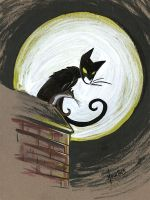Cat in the night by ManueC