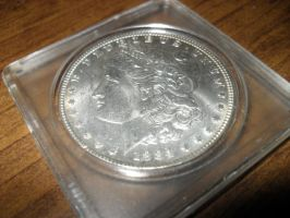 1884 Morgan Dollar by Miss-Merlina