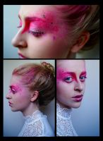 The Pink Dream by Andaciae