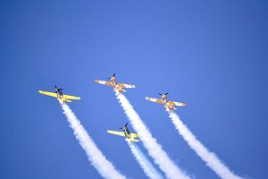 Aerobatic Yakers 3 by bibiwannafly