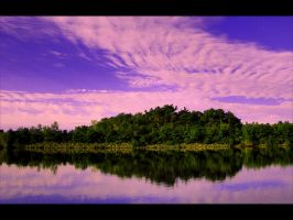 Mill Pond by Elppin