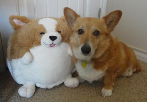 Holly Bear and her Squishable by Little-Moose