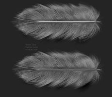 feather for wings wip by Artruder