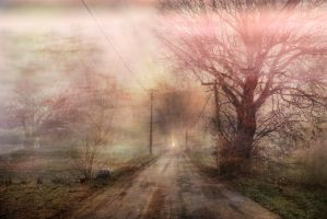 Road dream by Anupthra