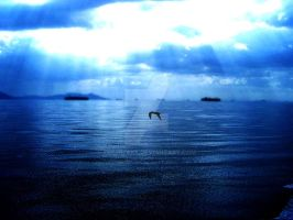 Another Lonely Bird by xdeeplake