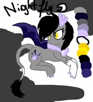 Nightfly CS by LiftyRainbowFennec