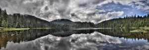 Another Ward Lake Afternoon by Muskeg