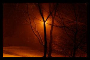 snow at night I by atut