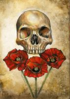 Poppy Skull by MGancarz