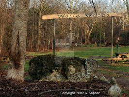 Wolfe Woods Entrance by peterkopher