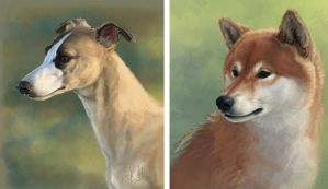 Whippet and Shiba painting practise stuff by Korpinarhi
