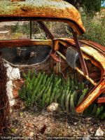 Your Car Is Full Of Cactus by datazoid