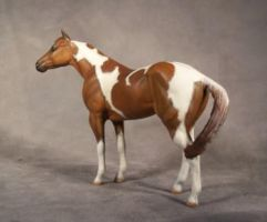 Pinto Paint Horse by ymagier