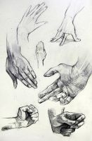 Anatomy Hand Studies by yolque