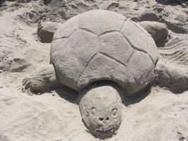 Sand sculpture - turtle.... by Dominoluv