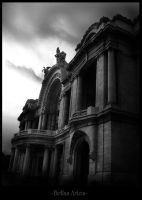 Bellas Artes by rmayani