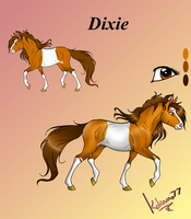 Dixie NEW Reference by kokamo77