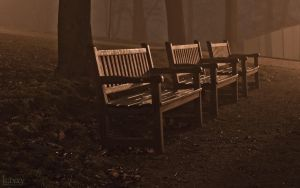 Lonely bench by haxxy